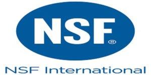 NFS International Logo