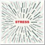 Nutrition To Heal From Stress